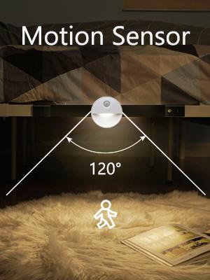 Morion Sensor Light