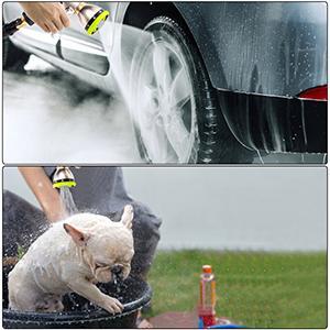 wash car and pet