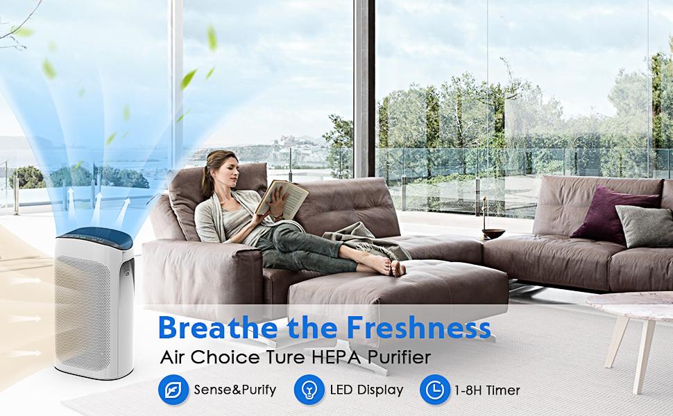 air choice air purifier for large home