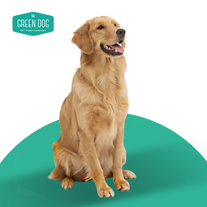 The Green Dog - Super Premium Vegan Dry Dog Food for Adults Plant-Based Protein