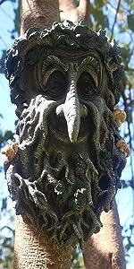 tree faces decor outdoor