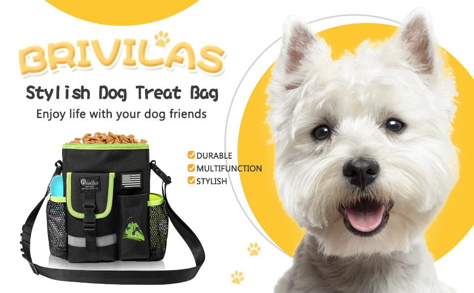 Stylish Dog Treat Bag