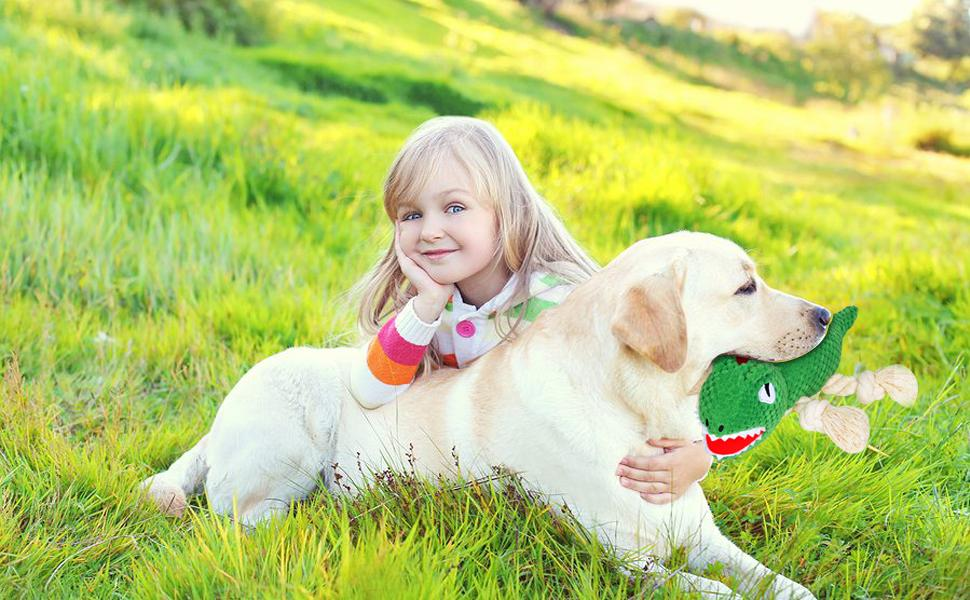 Squeaky Dog Chew Toys for Aggressive Chewers Stuffed Dog Toys