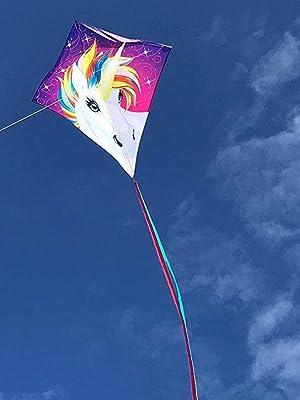 unicorn diamond kite, easy kite for kids, in the breeze, colorful kite, kite for boys, kite