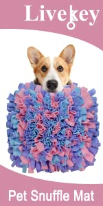 Snuffle Mat Pink,Purple and Blue