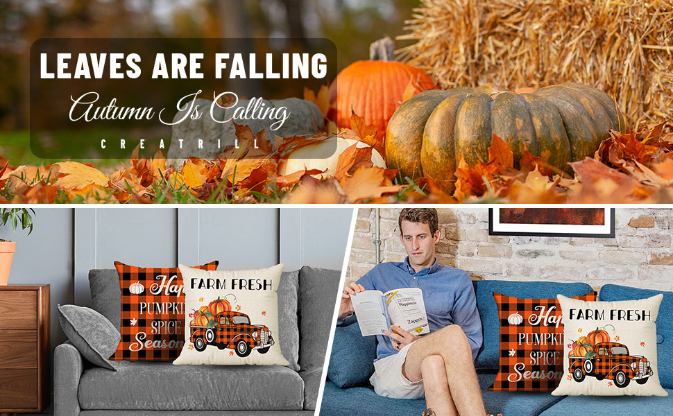fall pillows cover