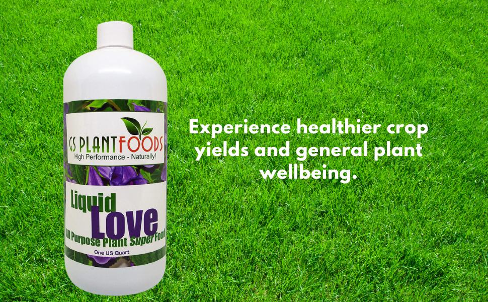 organic liquid love