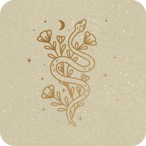 aAlchemy, alchemist book, alchemy and mysticism, alchemists