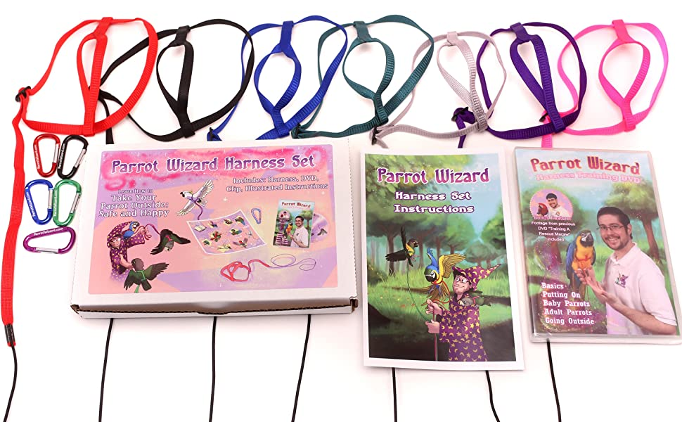 Parrot Wizard Harness Set Sizes Red Black Blue Green Silver Purple Pink