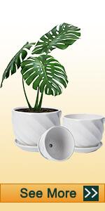 Ceramic White Pots with Diagonal  Stripes