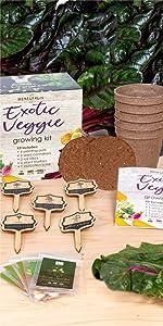 Exotic Veggie Garden Growing Starter Kit