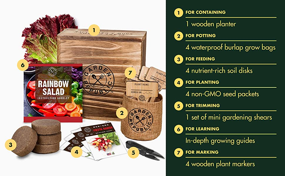 Rainbow Salad Starter Kit, DIY Home Gardening Gifts for Plant Lovers, Non GMO Heirloom Seeds