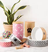 Collection of pet food bowls