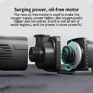 Surging power, oil-free motor