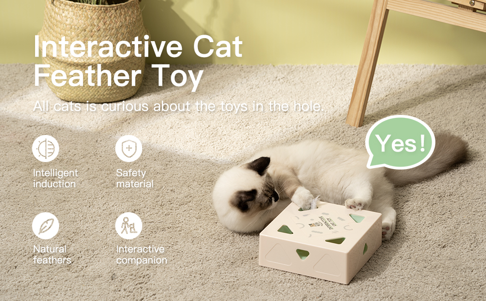 Mewoofun Interactive Cat Toys 1