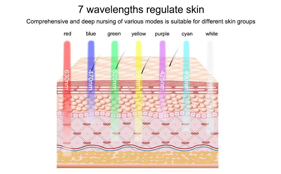 7 wavelengths regulate skin