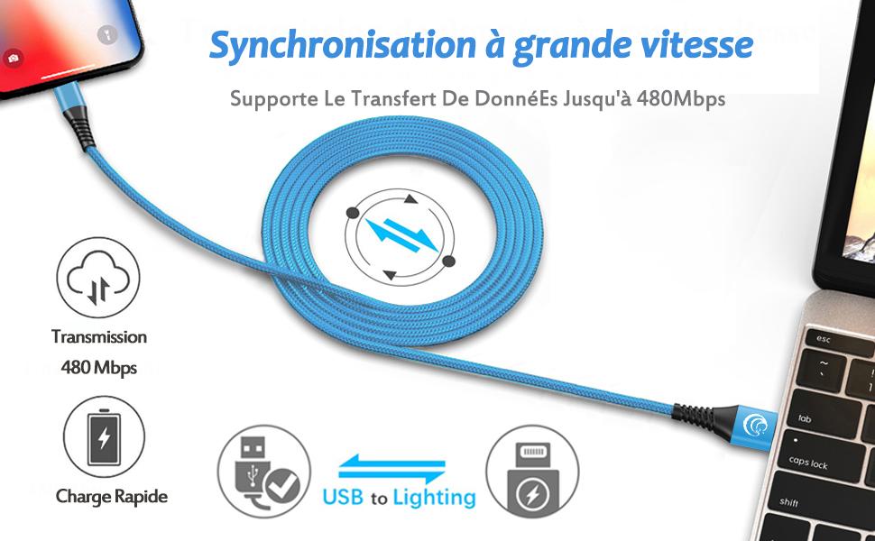 Câble Pour iPhone [2m/Lot de 3] Lightning Chargeur Cable