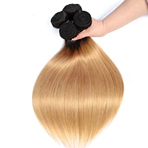1B 27 Ombre Hair Bundles