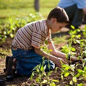 Kids gardening and planting