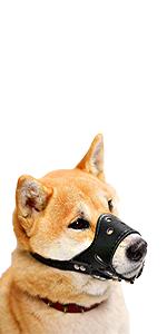 black leather dog muzzle