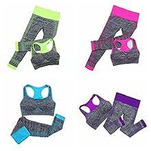 Sports Running Jogging Walking Exercise Bra Pants Tracksuit