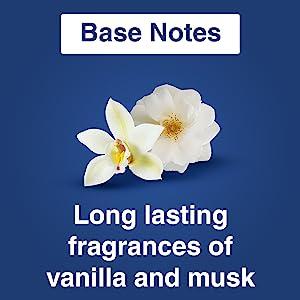 Base Note Vanilla Musk