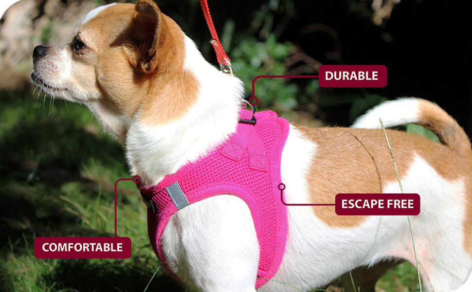 pet harnesses for extra small dogs, no pull, with control, reflective dog vest, adjustable, durable