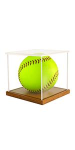 softball display case for memorabilia