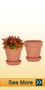 8 inch clay pot