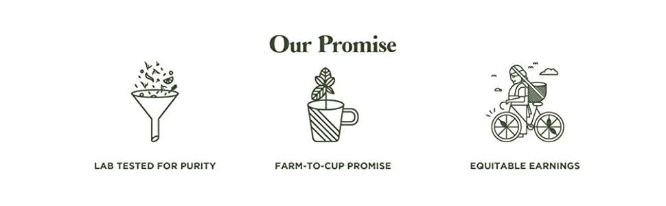 gte our promise