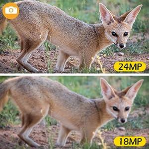 24MP 1296P trail camera