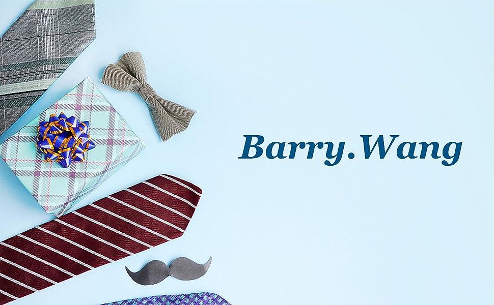 Barry.Wang Mens Formal Tie