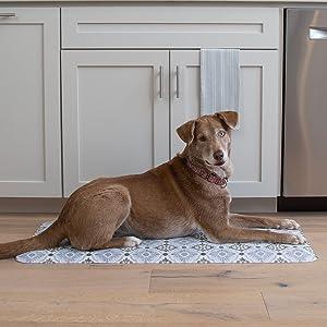 dog, camille mat,
