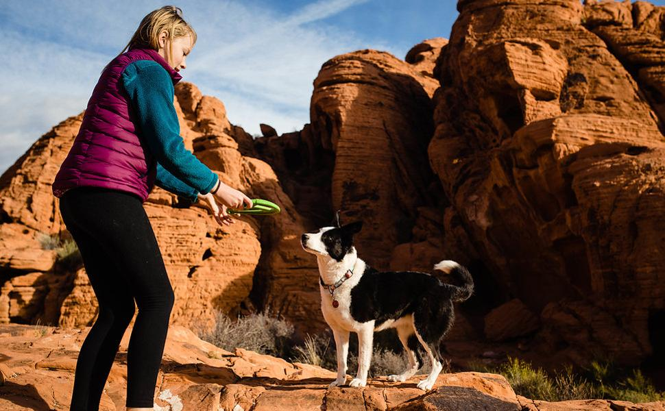 Dog out hiking with green wo disc