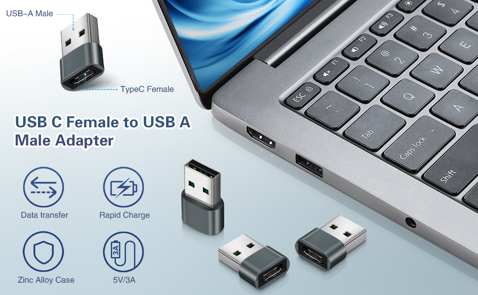 USB C Female to USB A Male Adapter
