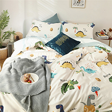 2 pillowcases