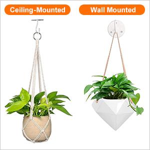 Ceiling Hooks for Hanging Plants Plant Hanging Bracket