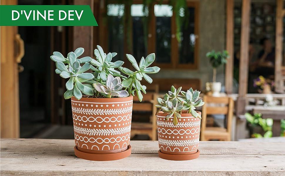 D'vine Dev Home and Garden Planter Pots
