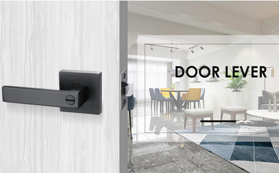 Privacy Door Lever