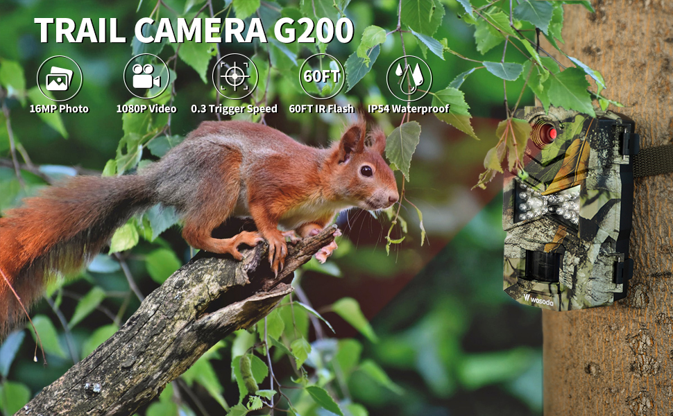 game camera 2 pack