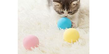 Cat Toy Ball
