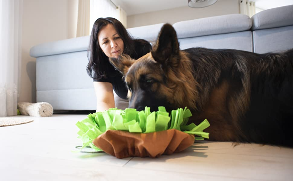 Snuffle Mat Lick Pad Licking Sniffing Chewing Treat Dispenser Enrichment Interactive Dog Toys Slow