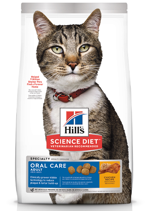 Adult, Oral Care, Dry Cat Food
