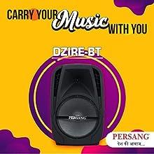 Portable Music System PA System Karaoke System (Multipurpose)