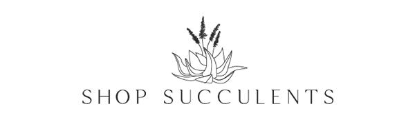 shop succulents logo