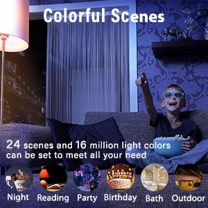 24 scenes setting
