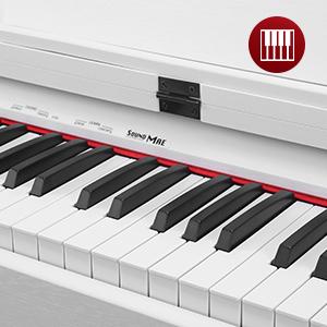 Standard Piano Keyboard
