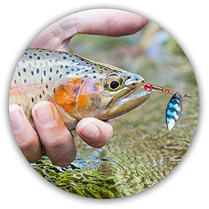 Roostertail Fishing Lures for bass trout