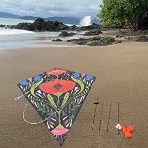 Image of Floral Kite on Beach with waves crashing in the background