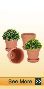 6 inch clay pot